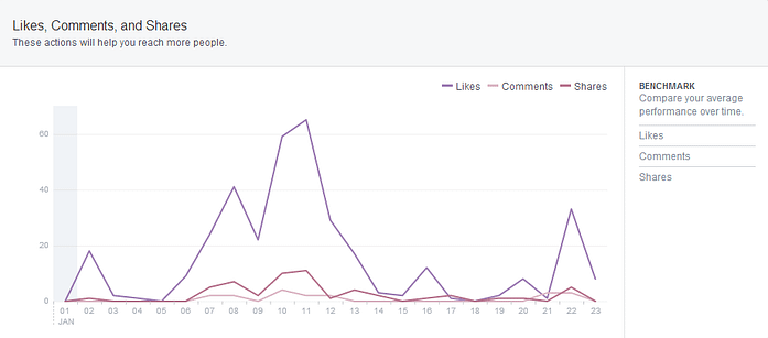 Facebook Insights Screenshot 2