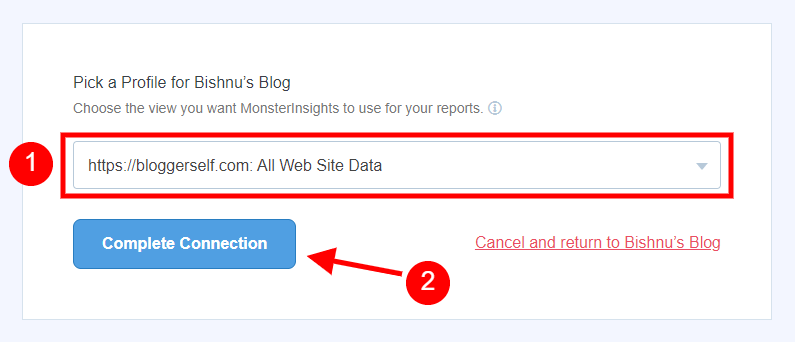Complete MonsterInsights Google Analytics Connection