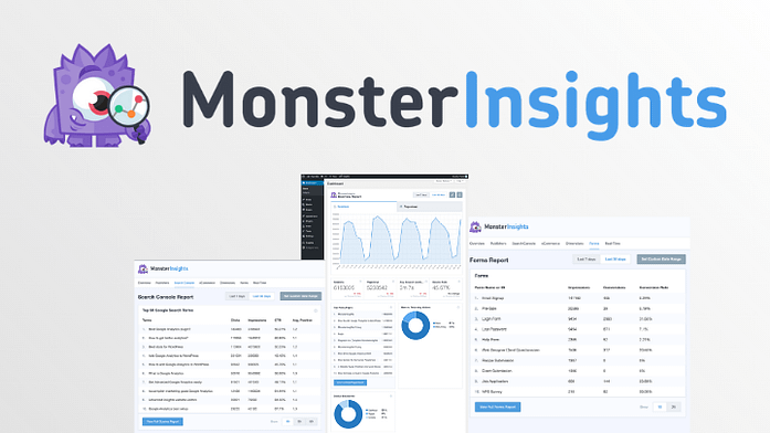MonsterInsights Custom Banner