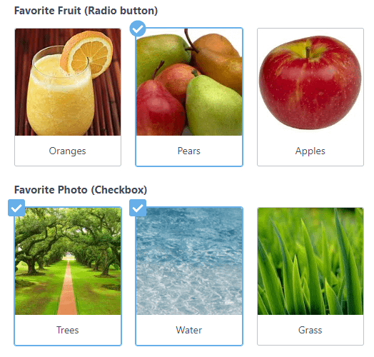 Image Checkboxes And Radio Buttons Formidable Forms