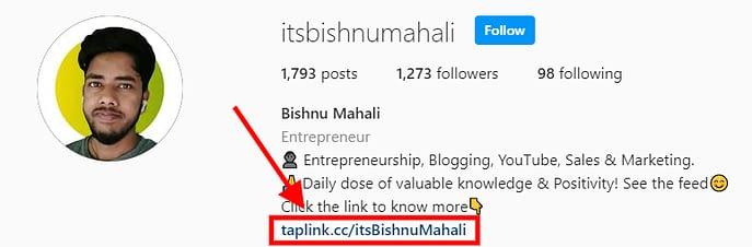 Instagram Profile Bio Link